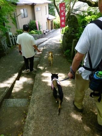 吉水神社42