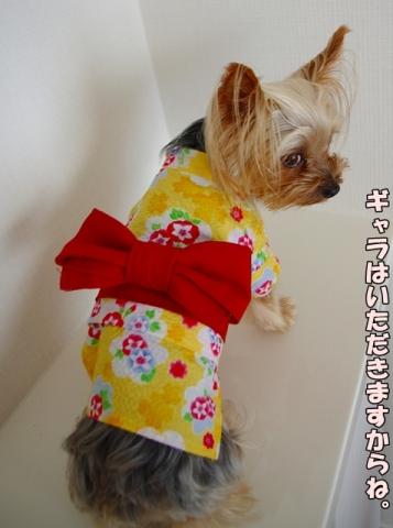 浴衣(朝顔イエロー)④