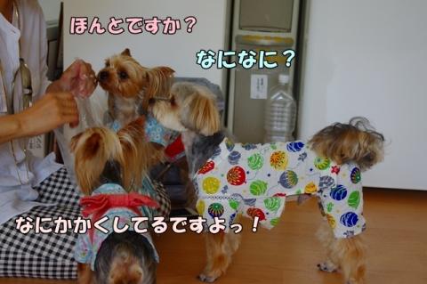 長崎へ2014-06-16⑦