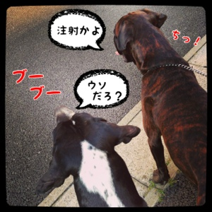 fc2blog_201404151925461f6.jpg
