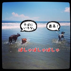 fc2blog_20140817181035835.jpg
