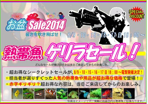 2014E3818AE79B86E382B2E383AAE383A9-thumbnail2.jpg