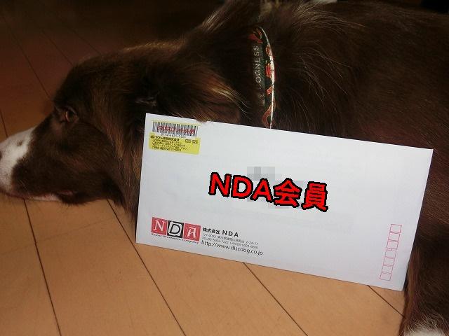 NDA letter