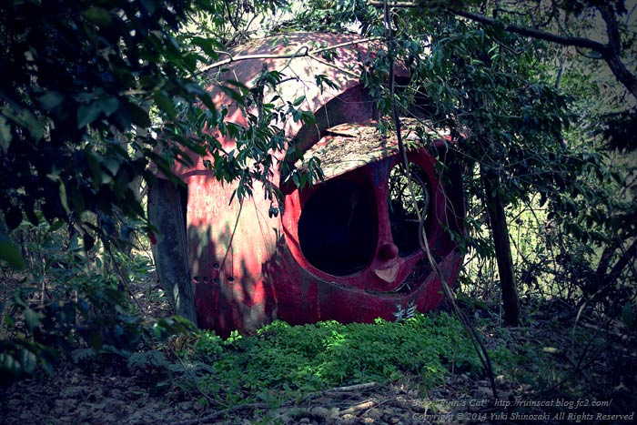 ダルマの里_01_藪の中のダルマ