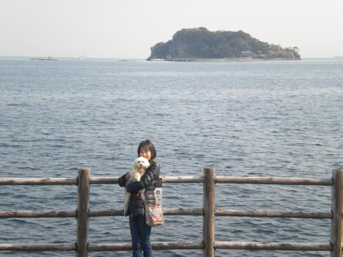 3月12日三浦半島ラスクとおかー