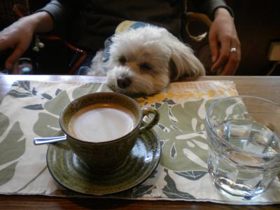 BIBI CAFE③
