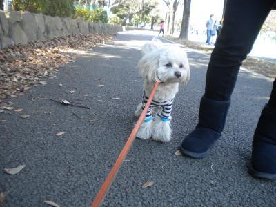 3月22日・お散歩