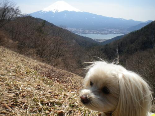 4月8日・天下茶屋前・富士山とラスク