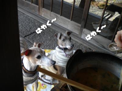 4月7日・天下茶屋・ほうとうとキャスバン