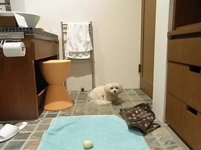 レジーナ富士・お風呂で待つラスク