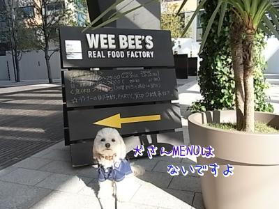 5月10日・WEE BEES宣伝隊長?