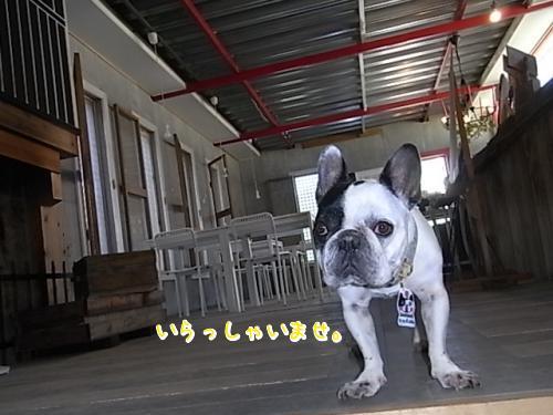 5月17日・Labulls店長Welcome