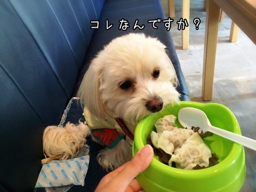 初めて食べます