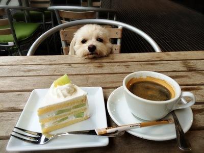 らっくんとケーキ