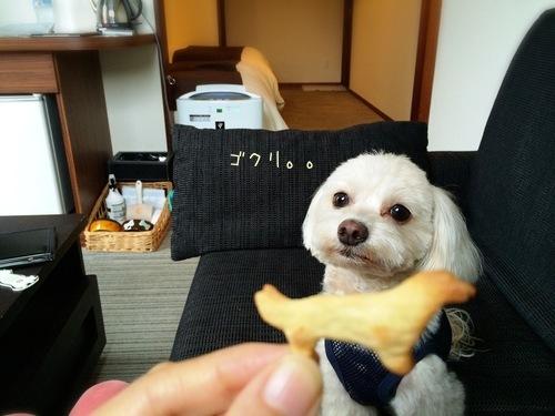 ウェルカムクッキー
