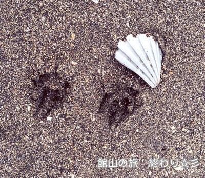 らっくんの足跡