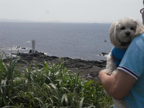 5月4日・城ケ島公園おとーとラスク
