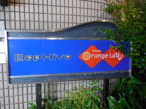 bee-hive1.jpg