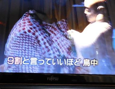 waragami-y114.jpg