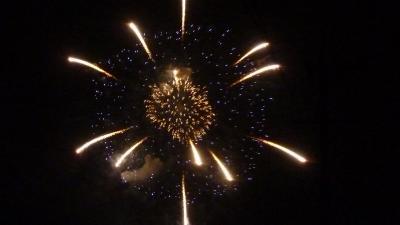 2盆の花火