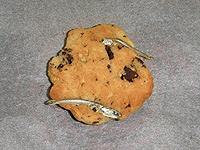 異物混入クッキー2