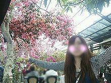 フラレた2014年春3