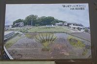 14善通寺の田んぼアート3