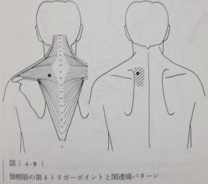 image (7) - コピー