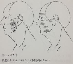 image (10) - コピー
