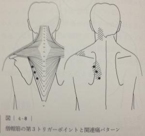 image (9) - コピー