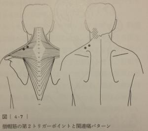 image (11) - コピー
