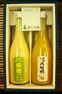20140630柑橘果汁