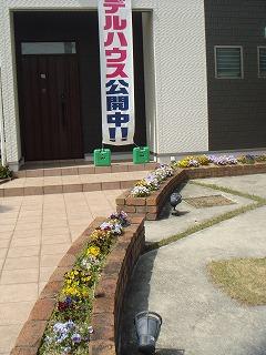 モデルハウスの花02
