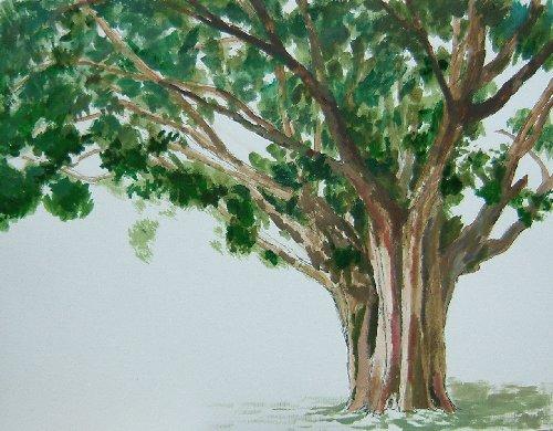 仏陀の木6