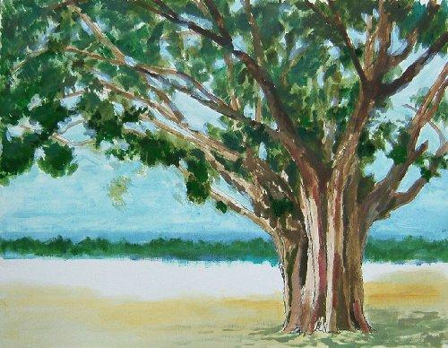 仏陀の木7