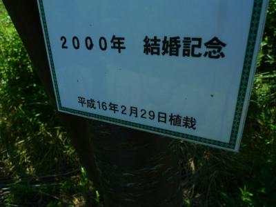 P1500991.jpg