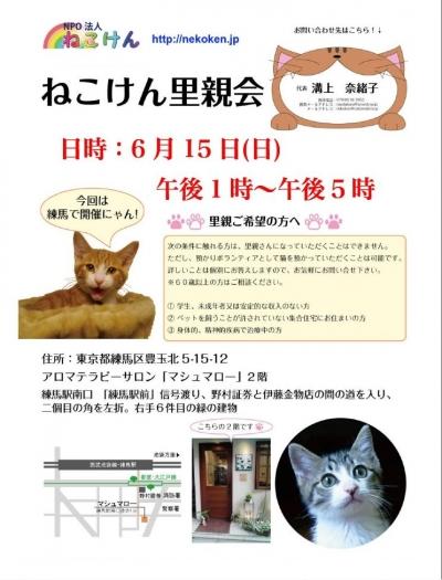 猫けんポスター