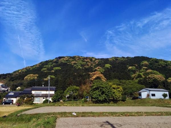 20140506satoyama.jpg