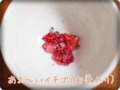 cookieblo1405072.jpg