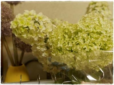 flowerblo1406166.jpg