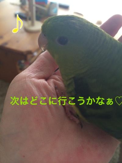 fc2blog_2014042409124049a.jpg