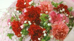 母の日ギフトに!母の日定番♪【赤いカーネーションの花束】