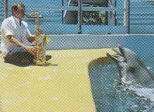 Stan Getz Dolphin-6