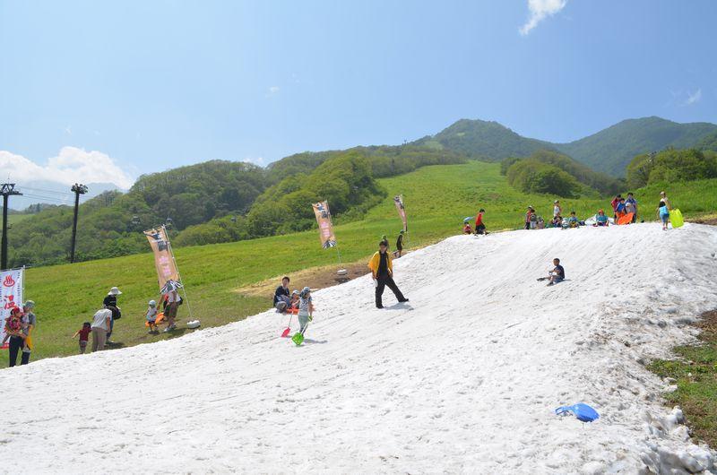 真夏の雪まつり