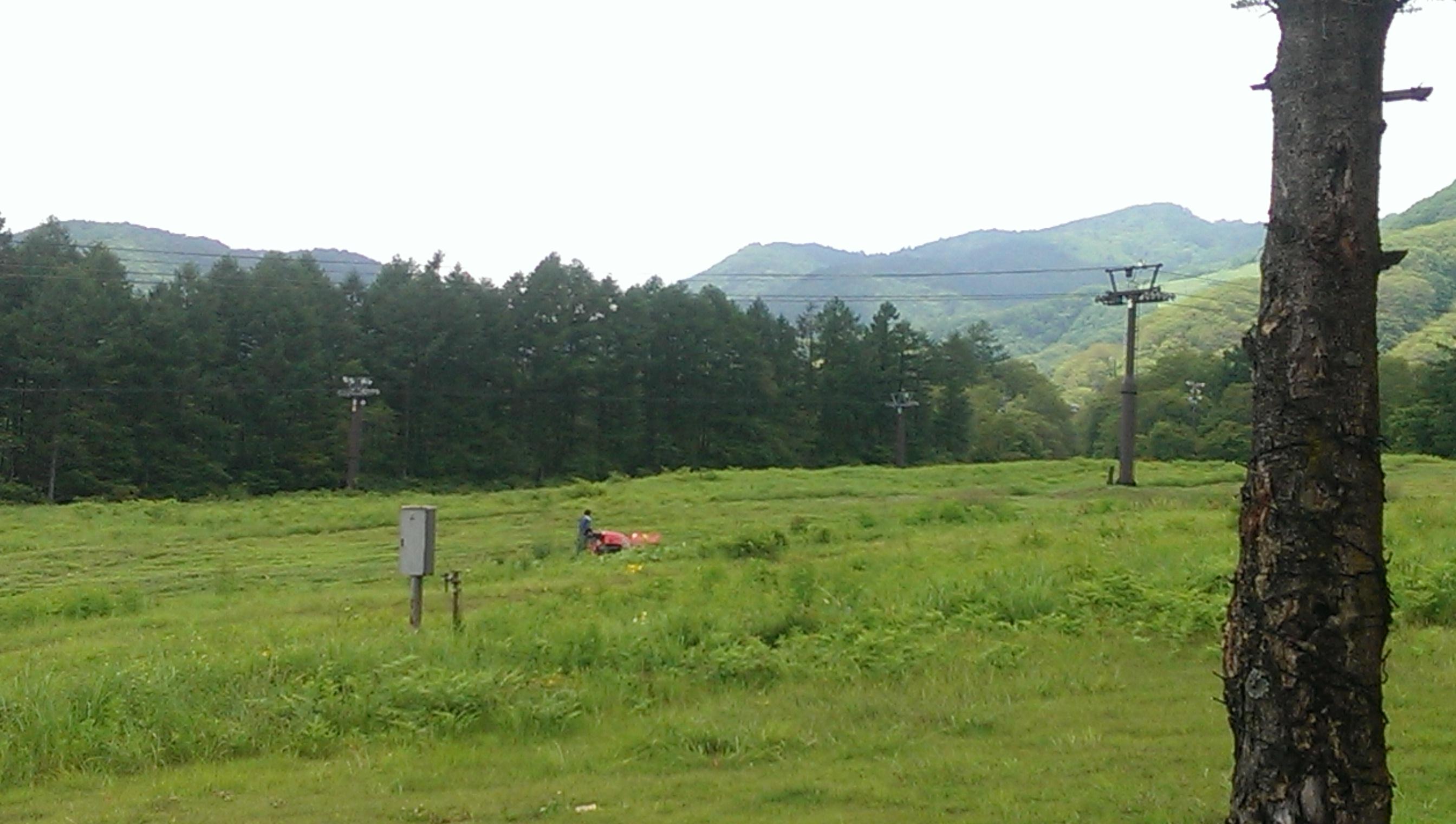 スキー場草刈り
