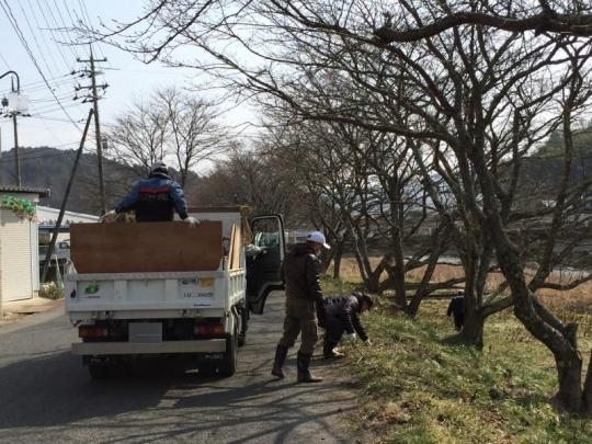 20140216_桜の枝切り_005