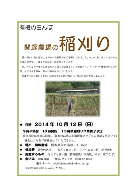 141012稲刈りチラシ
