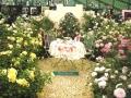 デビットオースチンの庭