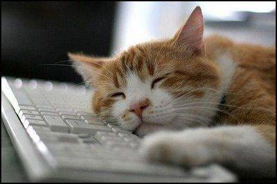 sleeping_w_PC2014
