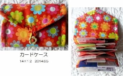 いっぱい入るカードケース  2014.6.5